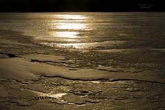 frozen river at golden sunset (mariola aga) Tags: winter evening sunset light sunlight glow golden reflection frozen water surface ice abstract art thegalaxy