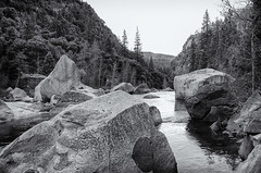 Merced River View - BW (rschnaible (Not posting but enjoying your posts)) Tags: yosemitenationalpark yosemiten 約塞米蒂國家公園(yosemite 约塞米蒂国家公园(yosemite landscape sierranevada mountains west western us usa california outdoor hike merced river bw black white photography monotone water