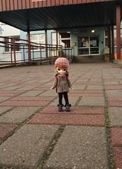 IMG_1620 (Zuzankowo) Tags: little dal puki