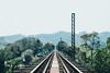 _MG_9518 (waychen_c) Tags: miaoli sanyi sanyitownship railway ruin bridge longtengbridge oldmountainline 苗栗 三義 三義鄉 龍騰斷橋 魚藤坪橋 魚藤坪斷橋 舊山線 yutengpingbridge