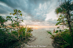 Barefoot Beach (J. Parker Natural Florida Photographer) Tags: beach barefootbeach naples florida gulfcoast gulfofmexico twilight sunset outdoor landscape scenic undeveloped sand palmtree ocean sea southflorida southwestflorida color vsco vscofilm sky wild pristine