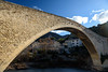 Nyons - Pont Roman (bautisterias) Tags: france francia winter rural ruralfrance country countryside frenchcountryside hiver inverno d750 olives olive provençal