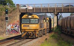 NR20 NR50 and NR94 speed through Tarro on SB1 freight to Brisbane (bukk05) Tags: nr20 railpage:class=37 railpage:loco=nr20 rpaunrclass rpaunrclassnr20 nr50 nr94 wagons explore export engine railway railroad railpage rp3 rail railwaystation railwaystations train tracks tamron tamron16300 trains tarro photograph photo pn pacificnational loco locomotive horsepower hp ge ge7fdl16 flickr freight diesel station standardgauge sg spring signal 2017 australia artc zoom canon60d canon container cv409i sb1 sydney brisbane nrclass nr nationalrail nsw newsouthwales newcastle nswr cityofnewcastle coal coaltrain mainline bridge gwa