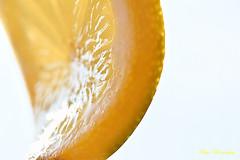 The squeezing of a lemon... (Maria Godfrida) Tags: macromondays macro closeup citrus lemon sidelight sidelit yellow orange whitebackground fruit food highkey weeklythemes fruits macromademoiselle