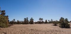 http---www.carrefourdesnomades.com - Hotel-Camping-Bivouac-Restaurant-1-5 (Piefke La Belle) Tags: kef aziza morocco marokko moroc ouarzazate mhamid zagora french foreign legion fort tazzougerte morokko desert sahara nomade berber adveture gara medouar foum channa erg chebbi chegaga erfoud rissani ouarzarzate border aleria 4x4 allrad syncro filmstudios antiatlas magreb thouareg