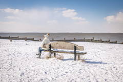 The woman in white, West beach, Whitstable (Aliy) Tags: whitstable kent winter wintery wintry snow snowy westbeach beach coast bench seat lady woman one 1 white