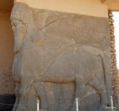 Lamassu Doorway to Throne Room, Nimrud Palace (6).jpg (tobeytravels) Tags: assyrian palace kalhu calah levekh zigararat lamassu throneroom shalmaneser ashurnasirpal layard stele nabu enli unesco