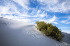 White Sands National Monument (Critter Seeker) Tags: whitesandsnationalmonument whitesands newmexico outdoors nature nationalpark sand sanddunes west southwest