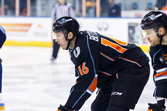 "Kansas City Mavericks vs. Toledo Walleye, January 20, 2018, Silverstein Eye Centers Arena, Independence, Missouri.  Photo: © John Howe / Howe Creative Photography, all rights reserved 2018. • <a style=""font-size:0.8em;"" href=""http://www.flickr.com/photos/134016632@N02/39130008004/"" target=""_blank"">View on Flickr</a>"