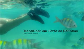 Mergulhar en porta galinhas  - Diaz De Vivar Gustavo