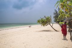 The Beach (hph46) Tags: sansibar africa tanzania zanzibar indianocean beach sand coastline maasai palmen sony alpha7r canonef1635mm14lisusm