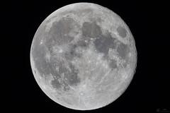 2018-02-01 01-44-42_031_Rubinar 1000mm f10 (wNG555) Tags: 2018 arizona phoenix moon fullmoon bluemoon bloodmoon rubinar1000mmf10 fav25 fav50