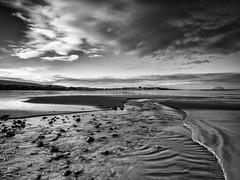 Winter Light on Culzean Beach (stephen cosh) Tags: ayrshire blackandwhite landscape mediumformat scotland stephencoshfineartphotography culzean unitedkingdom gb