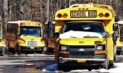 First Student #380 and #957 (ThoseGuys119) Tags: firststudentinc schoolbus pinebushny thomasbuilt dslr canon eos77d winter sunlight beautiful snow