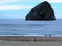 Surfer (thomasgorman1) Tags: or oregon surfer people pacific view scenic canon