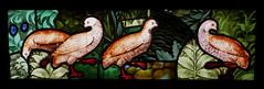 Quatre perdrix - Normandie, vers 1500 (Monceau) Tags: muséedecluny medieval stainedglass vitraux birds perdrix guineafowl