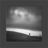 Vita A Due (W.Utsch) Tags: toscana tree minimalism landscape blackandwhite square poetic poesie