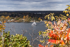 2017-10-26_11-50-31 Glenora Ferry (canavart) Tags: autumn princeedwardcounty ontario canada lakeontario lakeshore maple glenoraferry ferry leaves fall lake
