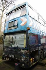 IMGP8163 (Steve Guess) Tags: surrey england gb uk bus dms daimler fleetline lt london transport buses ojd238r