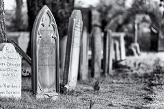 We all will end up here........ (David Feuerhelm) Tags: nikkor blackandwhite monochrome bw noiretblanc schwarzundweiss contrast dof churchyard cemetery graves tombstones nikon d750 70200mmf28