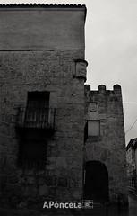 Palacio de los Alderete, en la villa de Tordesillas. (aponcelafoto) Tags: tordesillas palacio alderete followme aponcela tagsforlikes blancoynegro bn aponcelafotografo villatordesillas torde nikon beatiful aponcelanet flickr