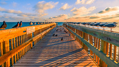 Pecking Order-3378.jpg (BER Photos 76) Tags: keys jetty blue dock ocean atlantic endless pier keywest birds sky sony a6000 pelicans infinity clouds