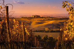 Tuscany Autumn (Ding Ying Xu) Tags: europe italy tuscany vineyard fields fallcolors sunset rollinghills countryside rural goldenhour autumn castle