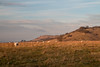 Approaching sunset (Mibby23) Tags: steps hill golden hour ivinghoe beacon sheep field landscape canon 70d 1585mm