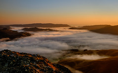 Above the clouds (lizcaldwell72) Tags: mist tukitukivalley sky hawkesbay newzealand sunrise light cloud