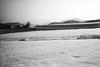 Snow Idyl (Koprek) Tags: fujigw690ii croatia film fomapan 100 prigorec ivanščica snow winter cold february 2018