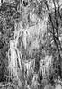 Ice Castle 1 (Puttknob) Tags: frozen icecold puttknob puttknobphotography winter denhamsprings louisiana unitedstatesofamerica 840