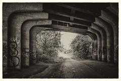 Underpass, Crab & Winkle line, Whitstable (Aliy) Tags: crabwinkle crabandwinkle walk path whitstable kent underpass bridge explored