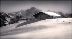 Sparkling in the snow (VandenBerge Photography) Tags: switzerland nature barn season snow snowscape mountains alps canon mono blackandwhite europe lonelyplanet landscape berneseoberland