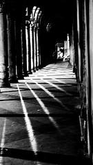 Versione B/N (Emanuela Pepe) Tags: luci ombre riflesso bn fujix portico fgurina colonne città anitca bologna