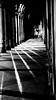 Versione B/N (#mimesi) Tags: luci ombre riflesso bn fujix portico fgurina colonne città anitca bologna