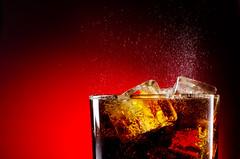 bebida (253)