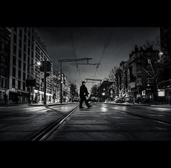 Paris by night (Photo-LB) Tags: route monochrome ciel streetphoto arbre voiture lumière light rue bâtiment intersection blackandwhite bw streetparis nikon d800 nikon24mm 24mmafs
