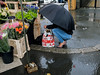 Wet Flowers (Ktoine) Tags: market candid street flowers umbrella rain pluie saintbrieuc bag shopping groceries winter autumn buying buy green local heels legs