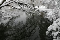 DSC08001_DxO (Jacquod1) Tags: arbre eau lac nature neige paysage reflet
