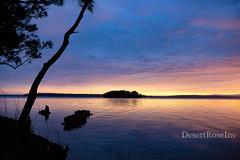 Pastel Basin (1DesertRose) Tags: peaceful scenic beautiful fujifilm australia landscape scene summer sunset pastel clouds island beauty lake basin nsw season coastal southcoast