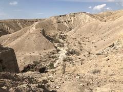2018-02-15 GOPS Geology Hike (127) (MadeIn1953) Tags: 2018 201802 20180215 greatoutdoorsgo go gops greatoutdoorspalmspringsgops hiking california coachellavalley riversidecounty meccahills paintedcanyon laddercanyon slotcanyon