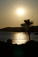(DodecaGR) Tags: aghiosisidoros coucher coucherdesoleil gourna grece leros lieux paysage