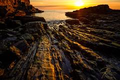 Ribbons of Gold (jsinon) Tags: horizon shadows sunrise goldenlight striated seascape maine cliff baldheadcliff fujifilm xt2 xf16 ocean sea landscape rock water
