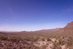 So Much Sky When The Clouds Are Somewhere Else... (Jason Delkou) Tags: jasondelkou sonorandesert arizona tucson desert saguaro cactus az landscape