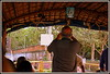 IMG_0042 (Uner Villa 5) Tags: india kerala backwaters alleppey cochin trivandrum varkala kovalam taj mahal kumarakom sub continent jungle quality surroundings world maharajah gypsy princess hindu hindi asia travel indie religion brahma shiva ganesh kings travelphotography national geographic gods own country