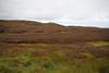 Moorland near Strathy Point (JonCombe) Tags: strathy sutherland scotland coast