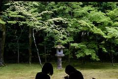 高桐院 Kotoin Temple (ELCAN KE-7A) Tags: 日本 japan 京都 kyoto 大徳寺 daitokuji 高桐院 kotoin temple ペンタックス pentax k3ⅱ 2017 庭園 新緑 fresh greenery garden