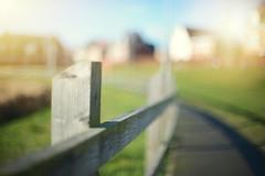 An Ordinary Fence... (KissThePixel) Tags: fence fencebokeh fencephotography happyfencefriday saturday hff woodenfence wood bokeh bokelicious dof dofalicious light sunlight nikon nikondf nikkor nikkor12 aperture walk dogwalk shadow shadows lightandshadows