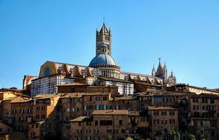 -Siena-