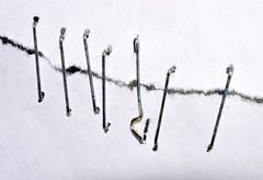 Stapled Together (donjuanmon) Tags: donjuanmon nikon macro macromondays staples paper abstract art fasteners metallic metal silver white highkey